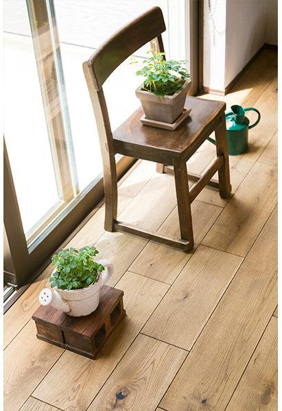 箱庭からの光でお家の中でも元気なグリーンたち。