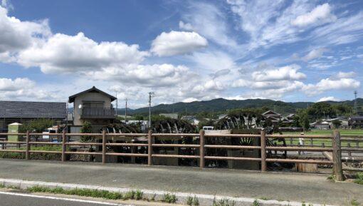 朝倉市の特徴
