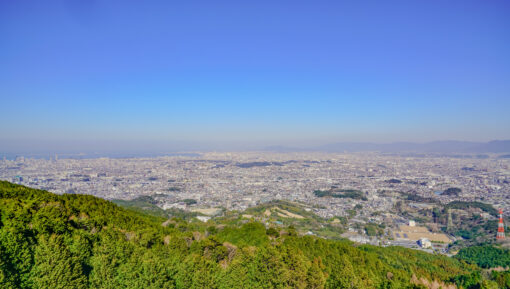 福岡市城南区の特徴