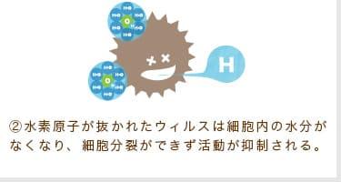 ②水素原子が抜かれたウィルスは細胞内の水分がなくなり、細胞分裂ができず活動が抑制される。
